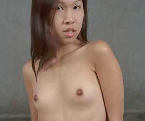 Asian beauty with pretty nipples Bee is showing her good puss