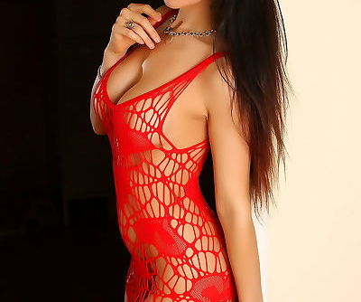Sexy brunette female Erika G poses non nude in see thru lingerie