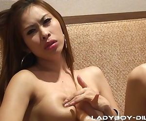 Super horny ladyboy Cartoon spreads legs and fucks her booty with a sex toy