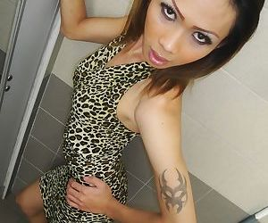 Skinny Thai ladyboy jerks off in public toilet after taking photos outdoors