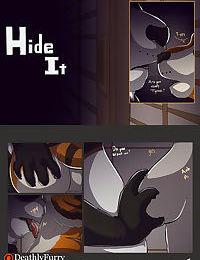 Hide It