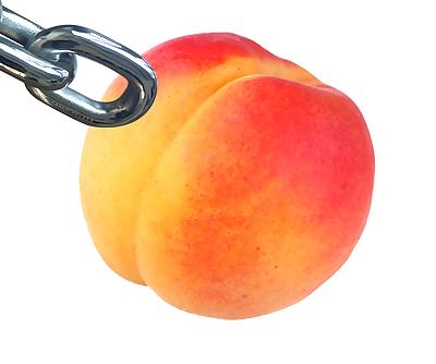 Peach X Link - part 12