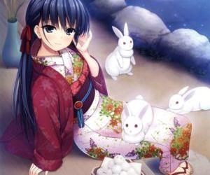 Himekuri 365 - 2017 Edition - part 4