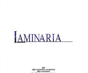 LAMINARIA C94 Omakebon