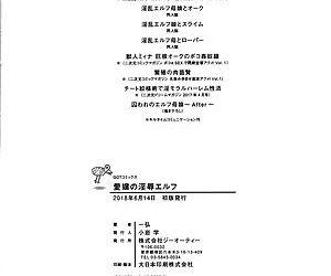 Aijou no Injoku Elf -Chinese - part 12