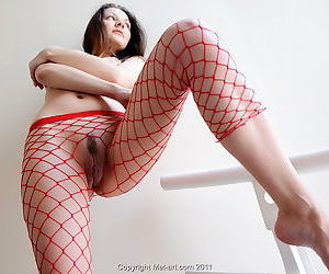 Nice perky titties and a trimmed pussy on the girl in the red fishnets