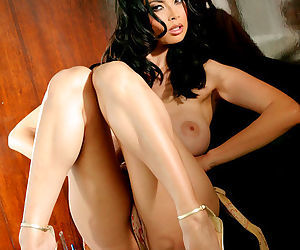 Tera Patrick is gently gorgeous in her sexy outfit and lovely high heels