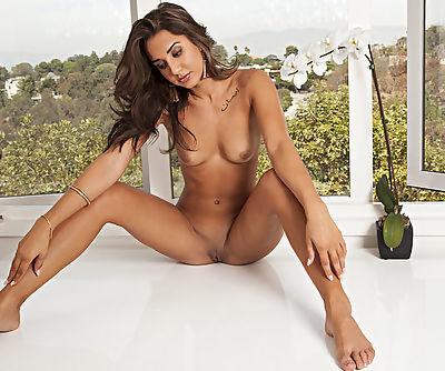 Slender sweetie in red panties curves on the window and exposes her sweet juicy qualities