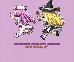 Patchouli and Marisa's Mushrooms
