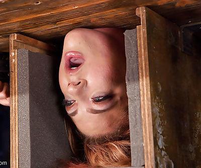 Tattooed model Dahlia Sky hung upside down with head in bondage box - part 2