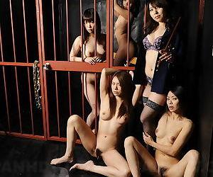 Japanese donjon sluts masturbating about win over - affixing 2626