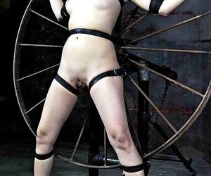 Nyssa nevers asian pamper bound to a spin be useful to pussy toying and sp - ornament 2688
