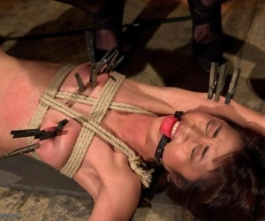 Marcia hase makes an explosive aura overhead whipped ass for the prankish majority - affixing 2893