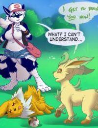 Pokemon Training