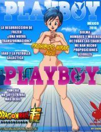 DBZ Playboy Gallery- Dissel - part 2