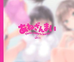 CL-orc 01 Ane Zanmai - Three sisters harem - 누나 삼매경
