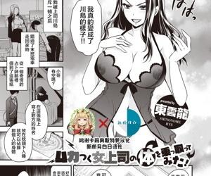Mukatsuku Onna Joushi no Karada o Nottotte Mita!