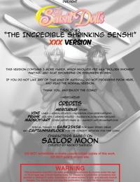 The Senshi Dolls #2 - The Incredible Shrinking Senshi