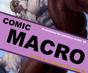 Comic Macro