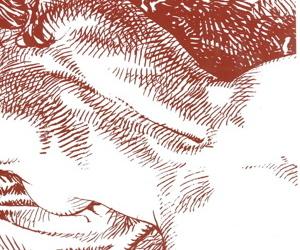 Losstaande Albums Winning b open Paolo Eleuterie Serpieri - Impudica